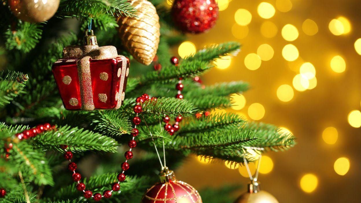 Koralikowy sznurek nada choince elegancji... (Fot. Shutterstock)