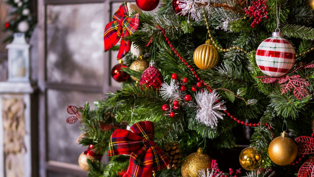 ... a ostrokrzew pokryty sztucznym śniegiem ożywi drzewko (Fot. Shutterstock)
