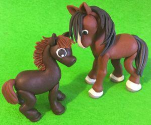 konie-tez-umieja-doskonale-skakac-pokonujac-rozne-przeszkody