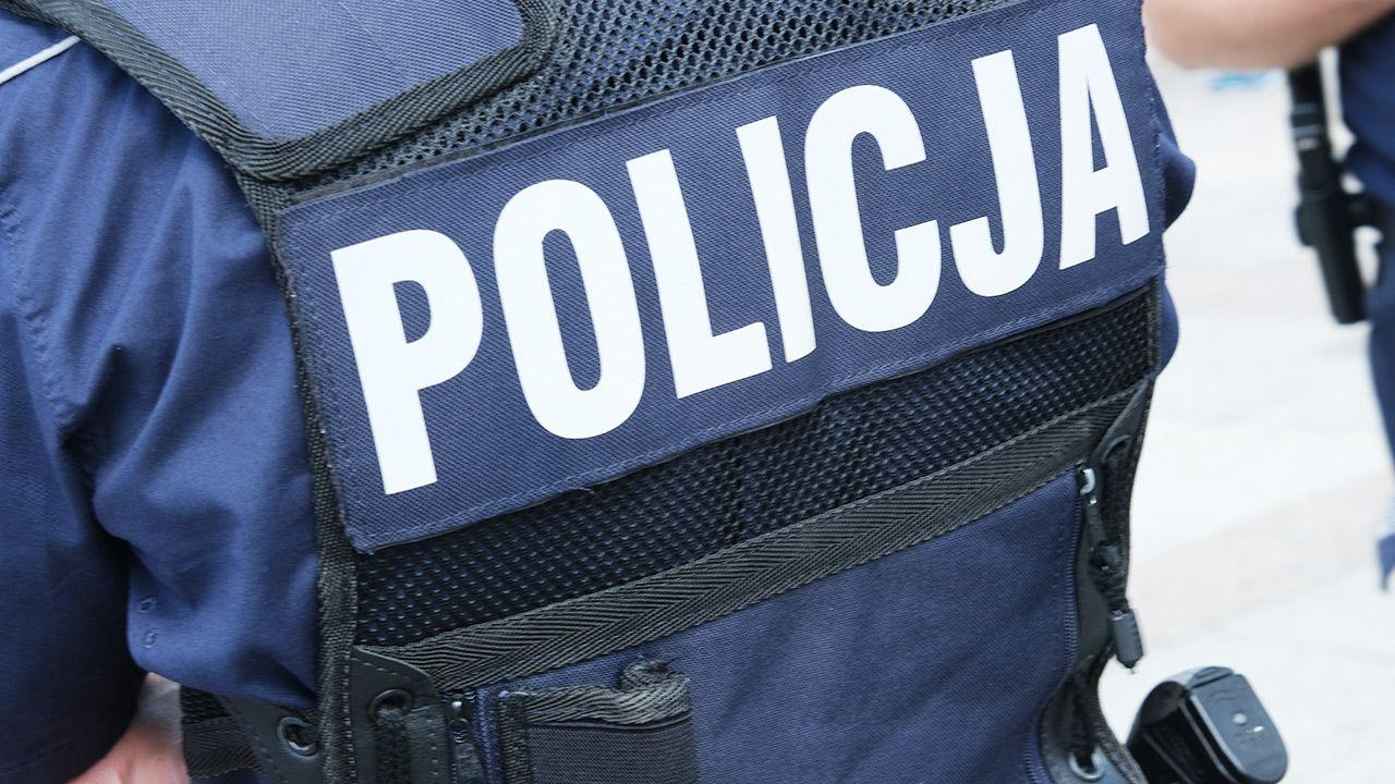 W trakcie policyjnej interwencji padły strzały (fot. Shutterstock)