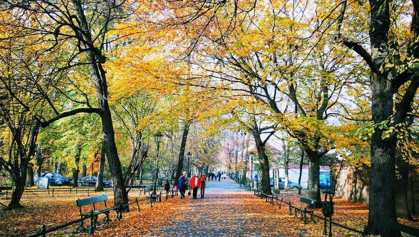 Prognoza pogody: środa i czwartek 20-21 października (fot. Shutterstock)