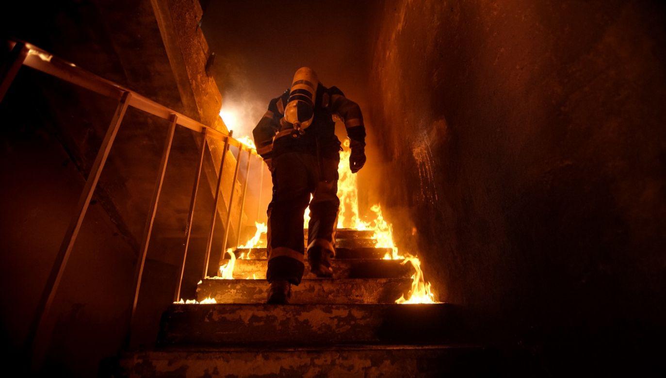 Pożar udało się opanować nad ranem (fot. Shutterstock)
