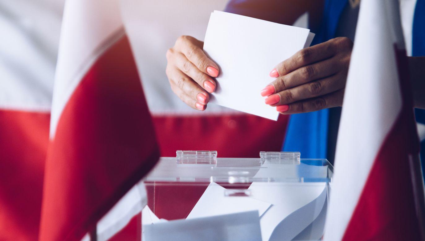 Dla Polaków w USA przygotowano rekordową liczbę 48 lokali wyborczych (fot. Shutterstock/Daniel Jedzura)