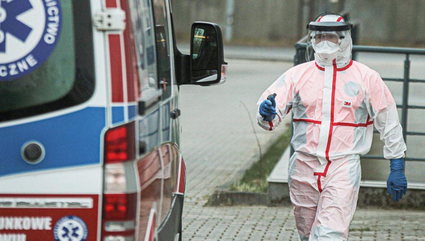 Łączny bilans wynosi 5205 potwierdzonych przypadków zakażenia (fot. Krzysztof Zatycki/NurPhoto via Getty Images)