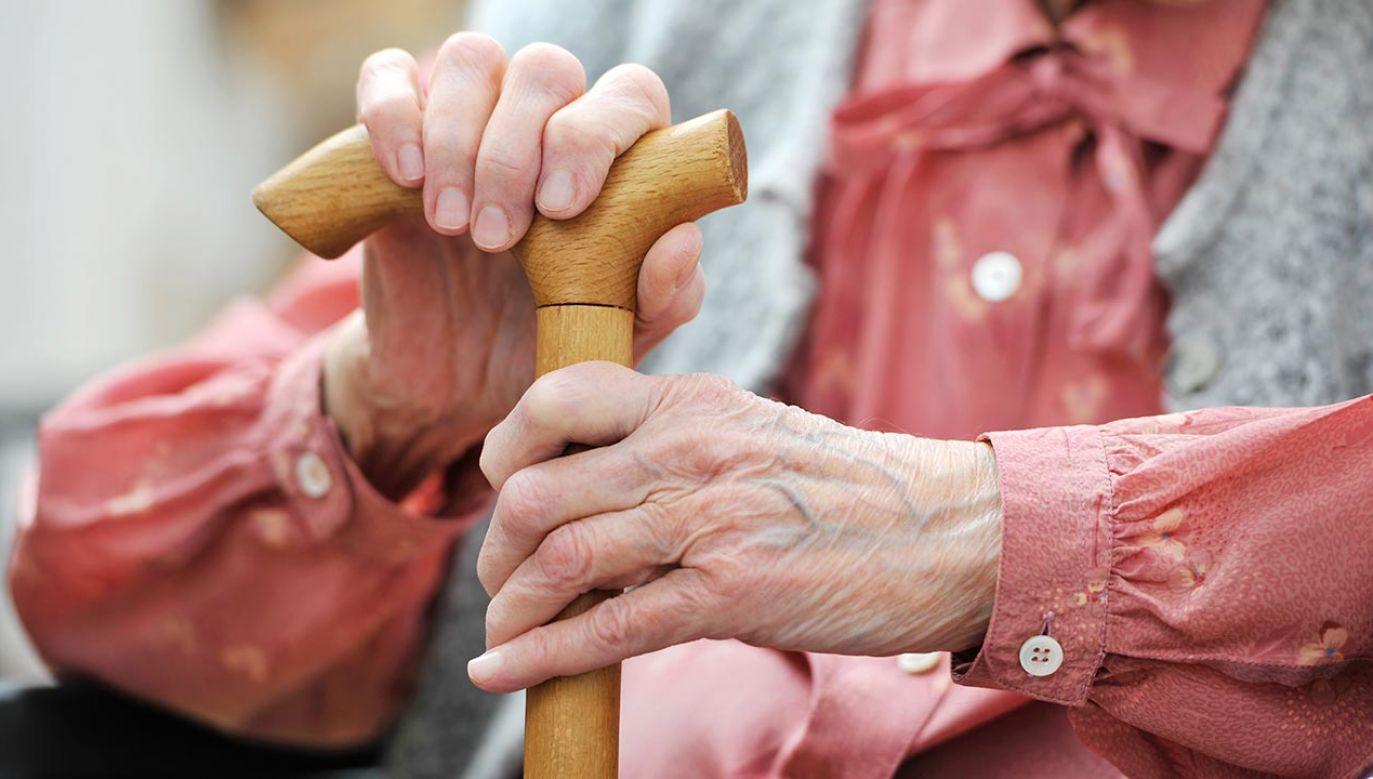 Dodatkowe 36 mld zł trafi do emerytów (Fot. Shutterstock/Alexander Raths)
