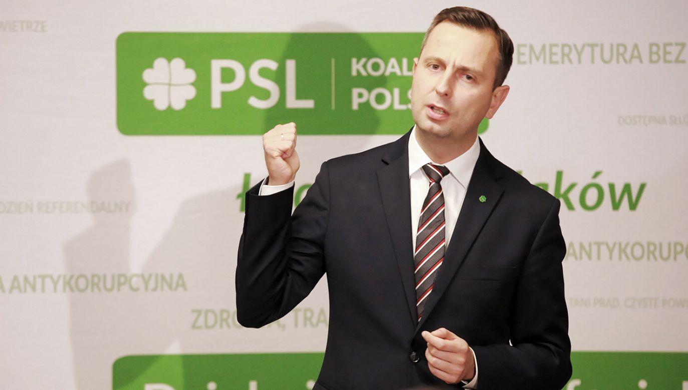 Prezes PSL przewodniczącym klubu  (fot. PAP/Piotr Augustyniak)
