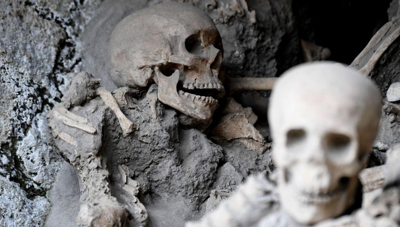 Znaleziono szkielet nieopodal Neapolu (fot. PAP/EPA/CIRO FUSCO)