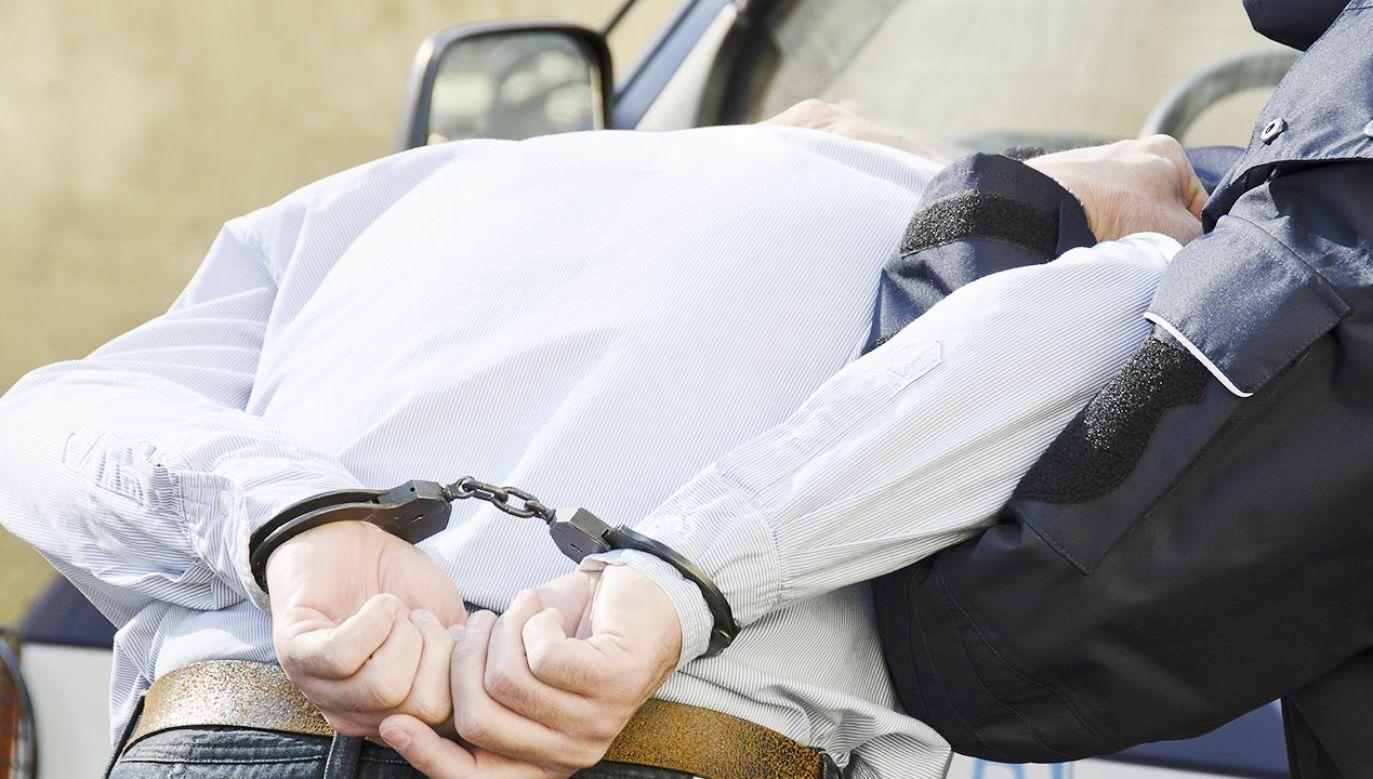 Polscy policjanci interweniowali na Litwie (fot. Shutterstock)