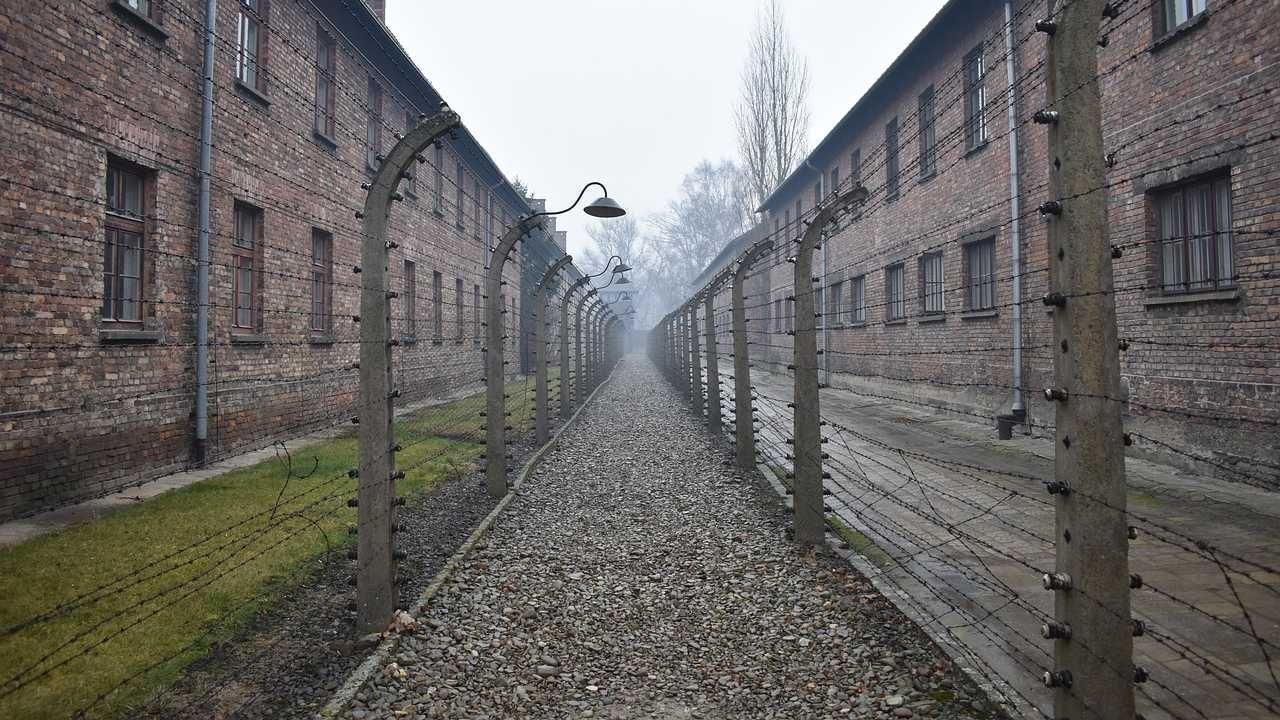 Niemcy ponoszą odpowiedzialność za zagładę Żydów podczas II wojny światowej (fot. Pexels)