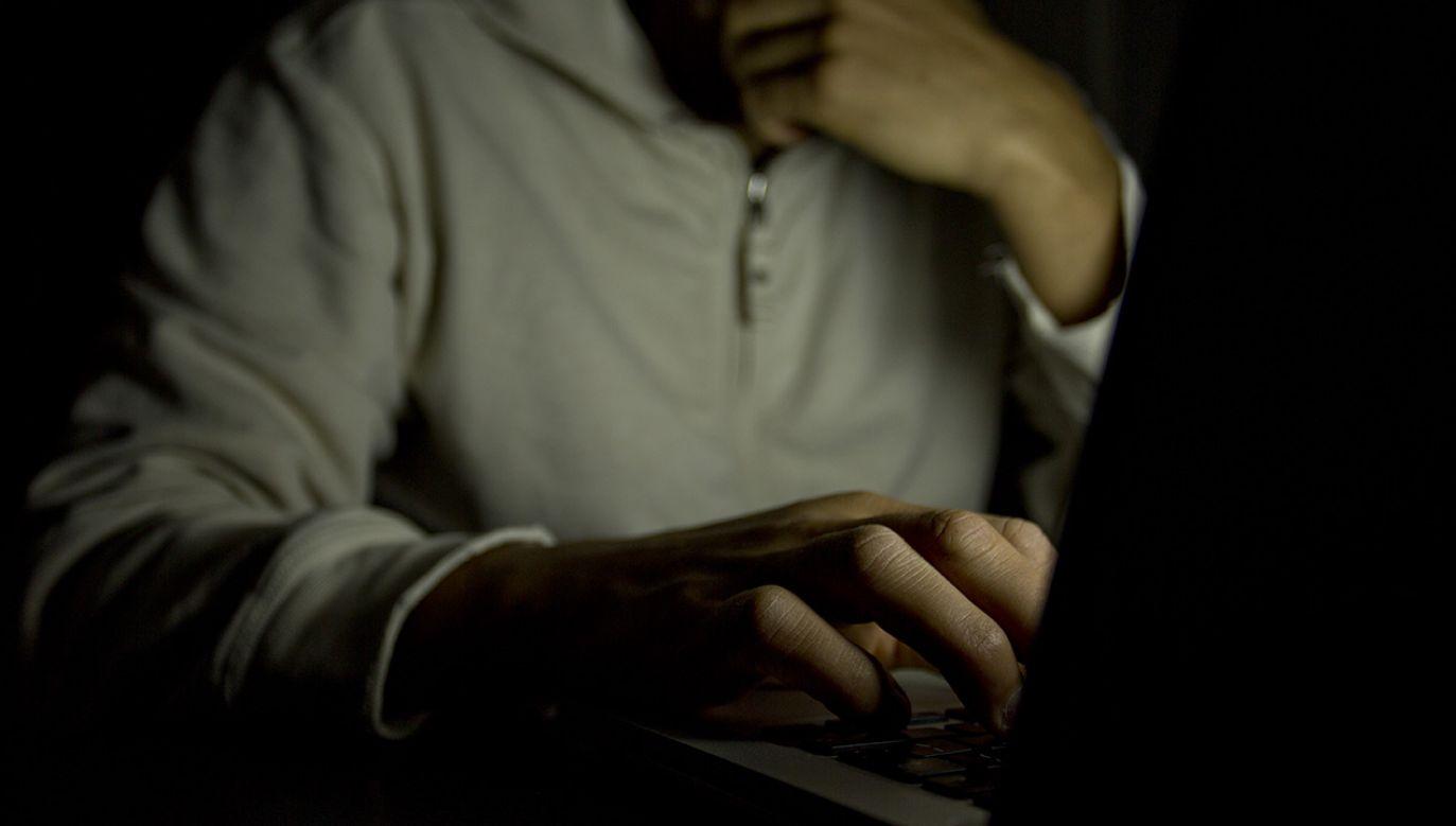 W 35 proc. wszystkich badanych spraw miejscem popełnienia czynu był internet (fot. Shutterstock)