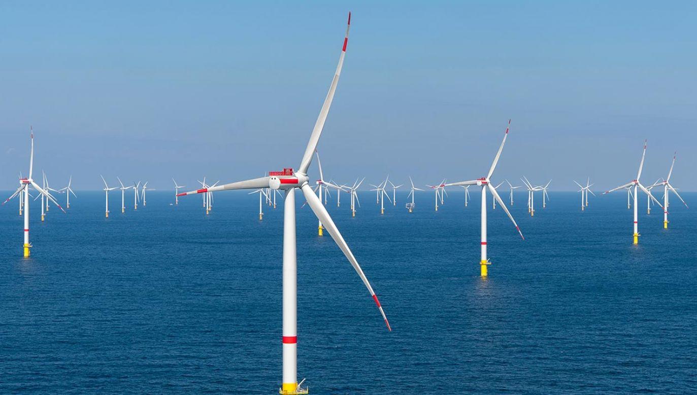 Moc z farmy wiatrowej na Bałtyku będzie wyprowadzana całkowicie pod ziemią (fot. Shutterstock/Tom Buysse)