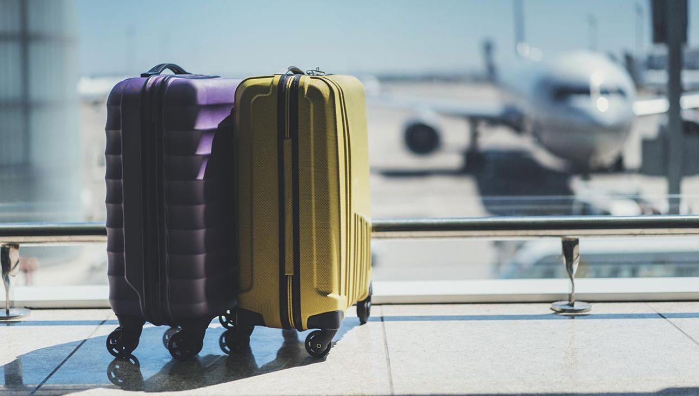 Obcokrajowcy z koronawirusem chcieli dostać się na pokład  (fot. Shutterstock/ImYanis)