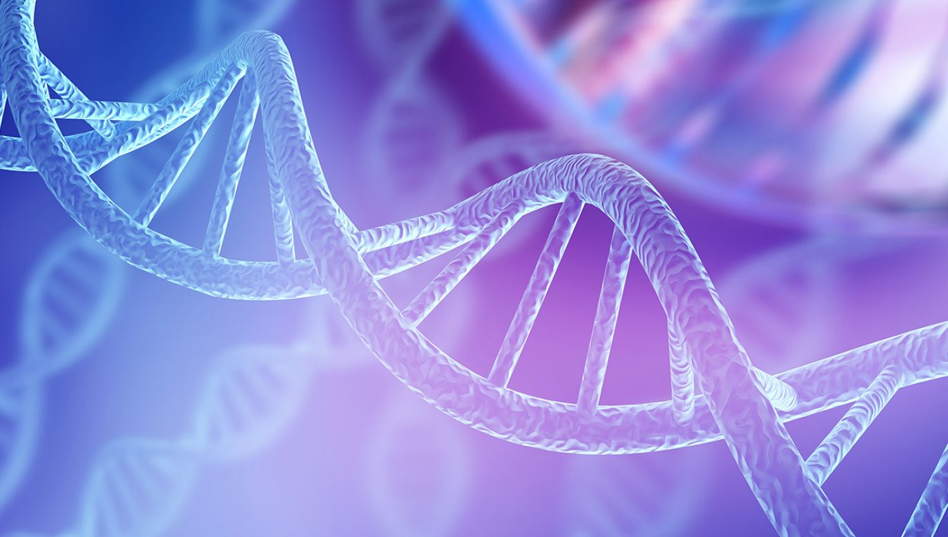 Analiza wskazuje jednocześnie na ważne wyjątki, takie jak choroba Crohna, celiakia czy zwyrodnienie plamki żółtej, na których rozwój geny w pływają w 40–50 proc. (fot. Shutterstock/Billion Photos)