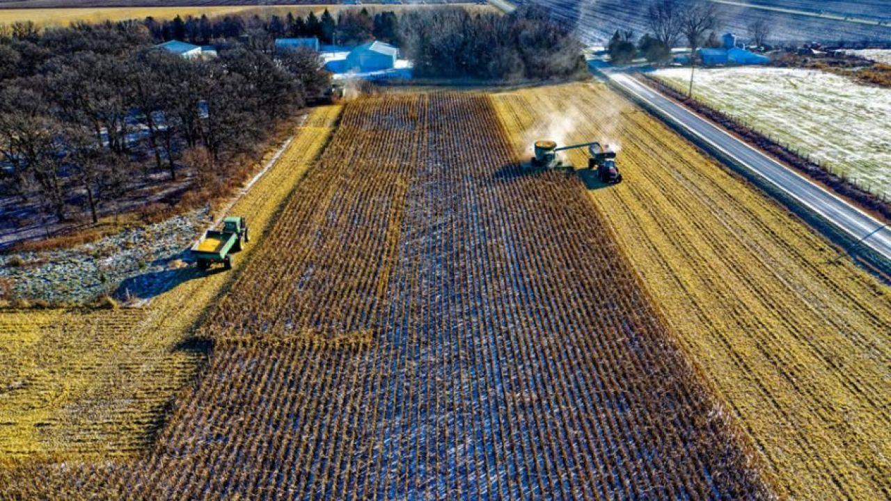 We francuskim rolnictwie brakuje 200 tys. pracowników (fot. Pexels)