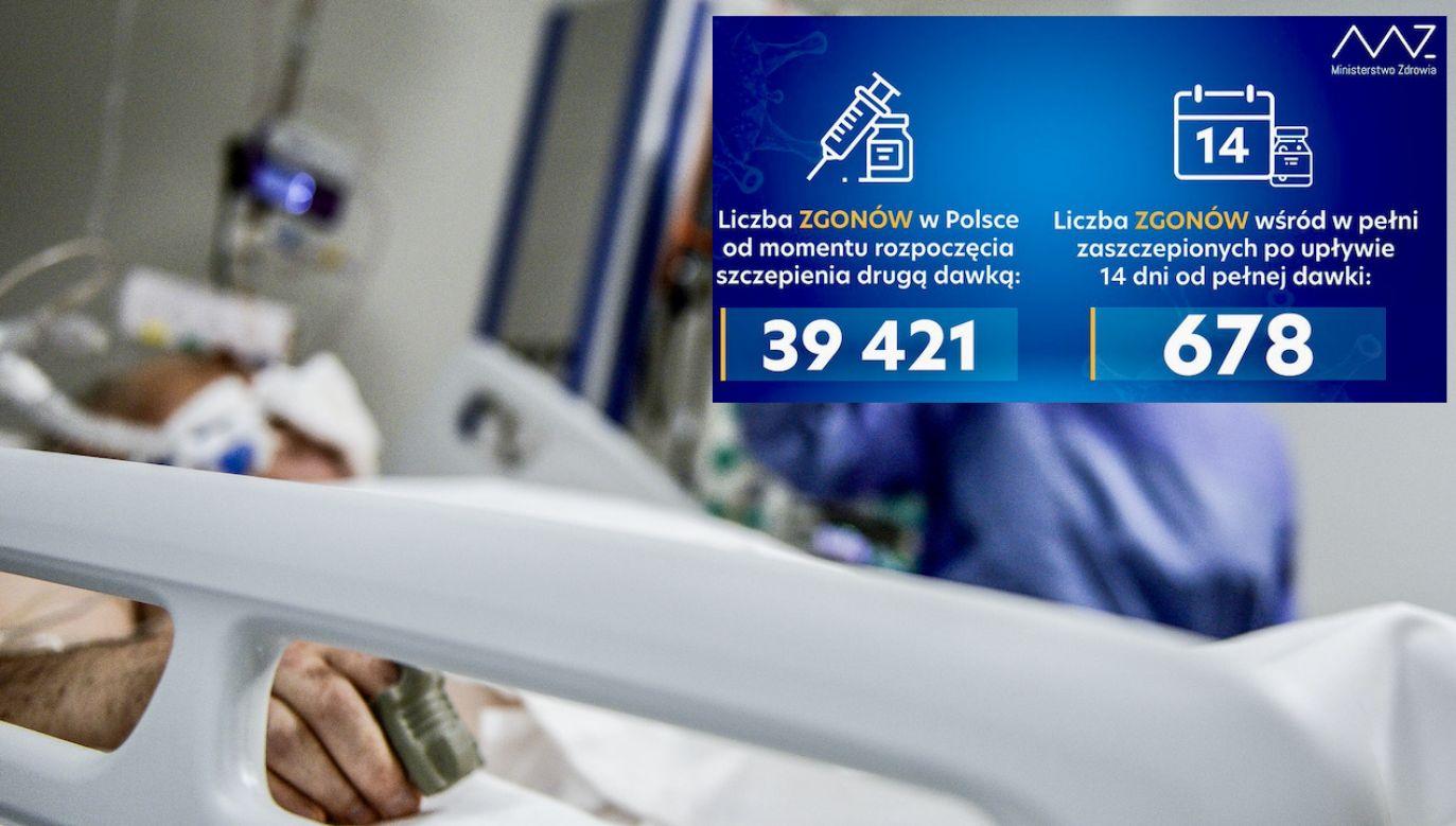 Szczepionkę w pełnej dawce przyjęło ponad 19 mln Polaków (fot. tt/@MZ_GOV_PL, O.Marques/Getty Images, zdjęcie ilustracyjne)