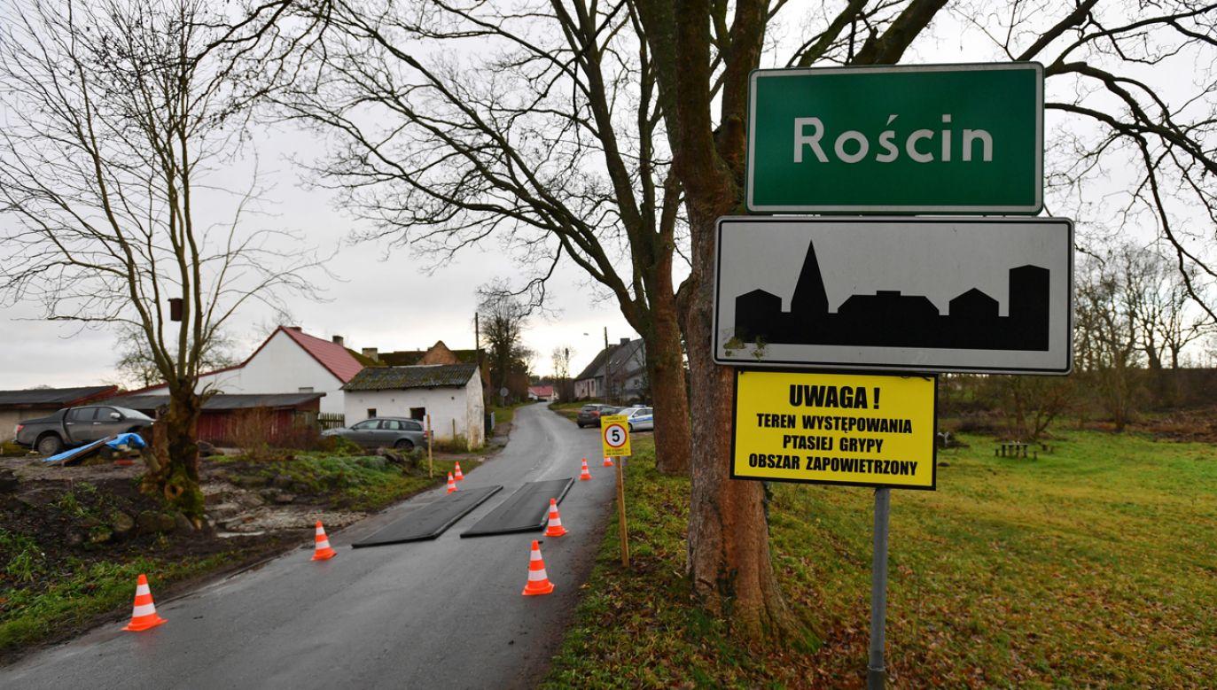 Służby weterynaryjne ustanowiły obszar zapowietrzony o promieniu trzech kilometrów wokół ogniska choroby (fot. PAP/Marcin Bielecki)