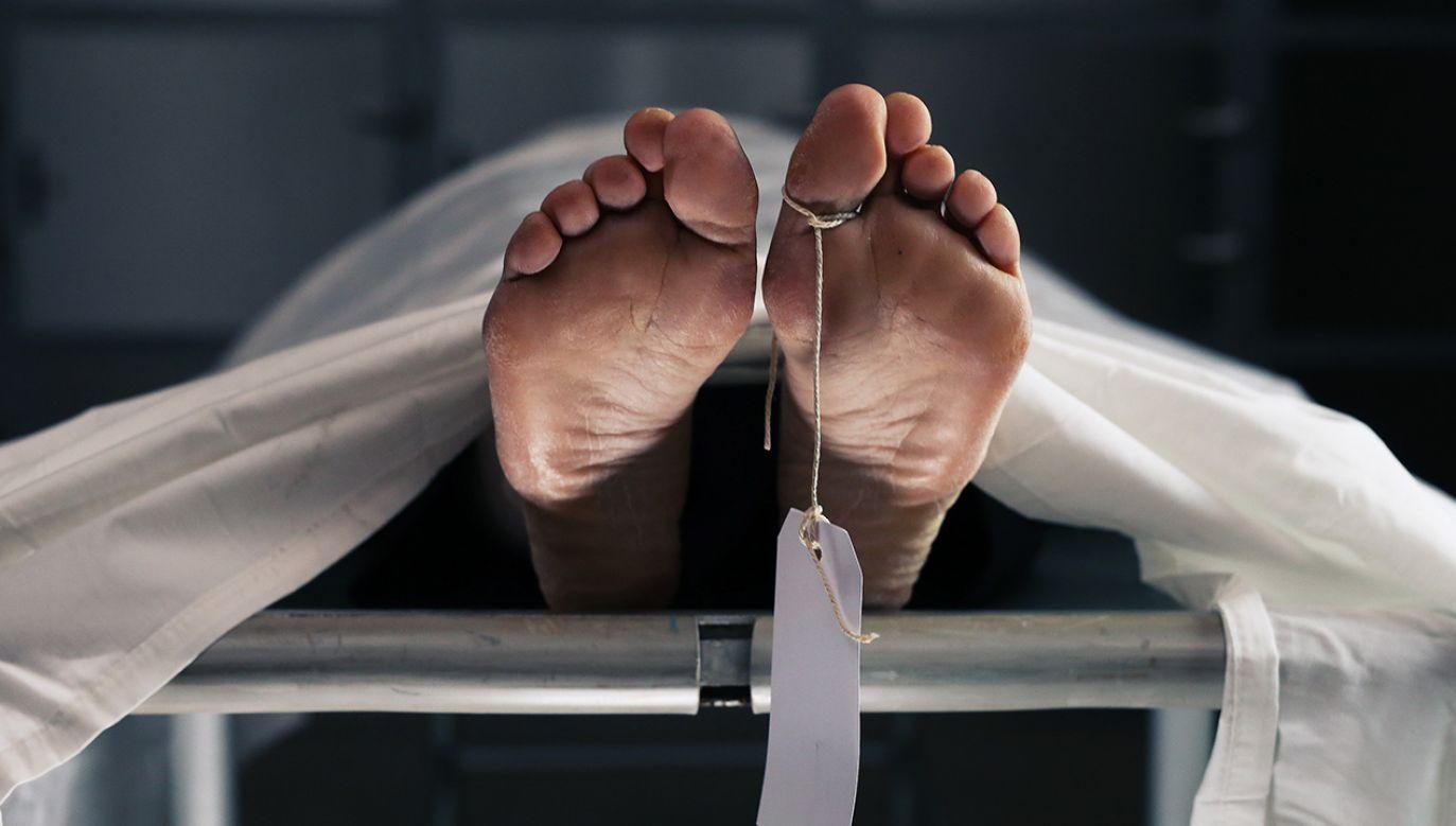 Mężczyzna oskarżony o zabójstwa początkowo usłyszał zarzuty m.in. przywłaszczenia mienia kobiety oraz dokonania w czerwcu 2019 r. jej zabójstwa (fot.  Shutterstock/Skyward Kick Productions)