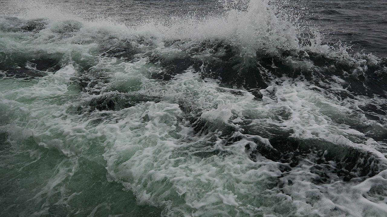 Do zdarzenia doszło na morzu w okolicach Władysławowa (fot. arch. PAP/Adam Warżawa)
