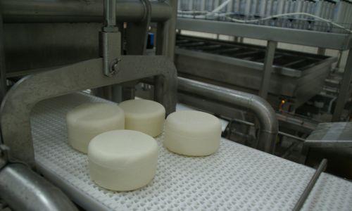 – Zmieniłem radykalnie dietę: zero produktów krowich, sto procent owczych – masło, sery, mleko. Na początku to był bundz i oscypki. Ale poszedłem dalej w eksperymentach, bo zostałem smakoszem serów dojrzewających. Tak je polubiłem, że trudno mi było się bez nich obejść –wspomina były prezes Optimusa.