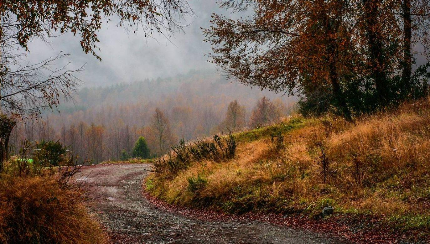 Jaka pogoda czeka nas w niedzielę? (fot. Pixabay)
