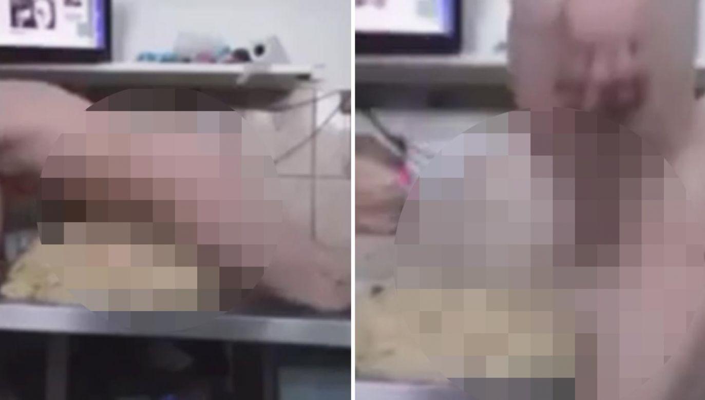 Obrzydliwe nagranie trafiło do sieci (fot. FB)