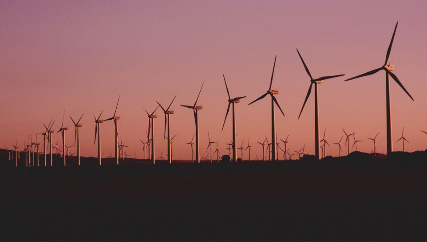 Energia wiatrowa ma w całości zasilać trzy browary należące do Kompanii Piwowarskiej (fot. Pexels)