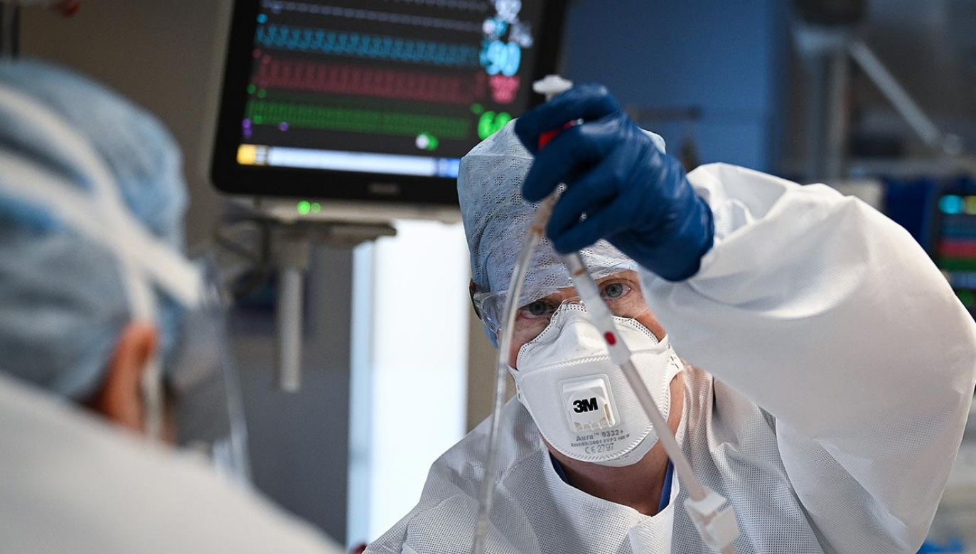 """Wykonane z ludzkich komórek sferoidalnych płuc """"przynęty"""" mogą wiązać się z wirusem SARS–CoV–2 (fot.  Jeff J Mitchell/Getty Images)"""