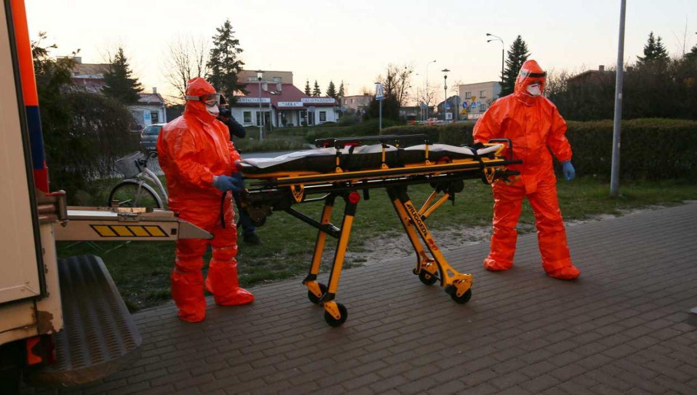 Zdaniem analityków, pacjentom w Polsce nie zabraknie łóżek szpitalnych (fot. PAP/Tomasz Wojtasik)