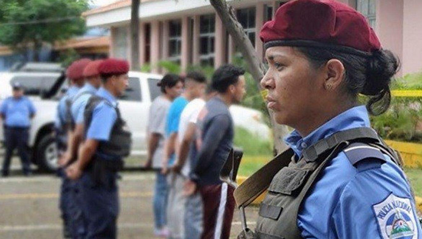 Czterej mężczyźni zostali zatrzymani po nielegalnym przekroczeniu granicy (fot. TT/PacoZeaCom)