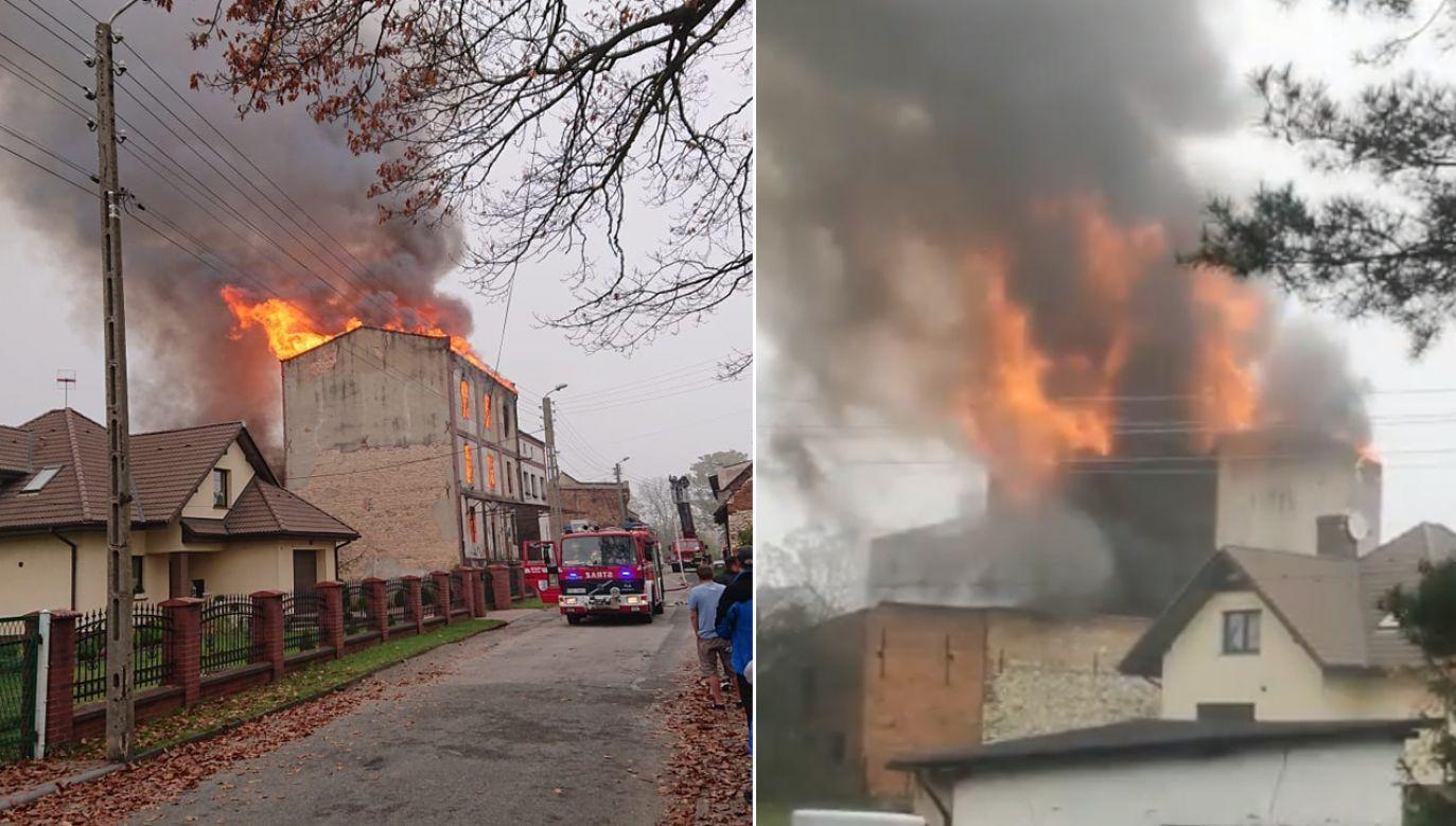 Pożar młyna w Toszku (fot. FB/OSP Toszek)