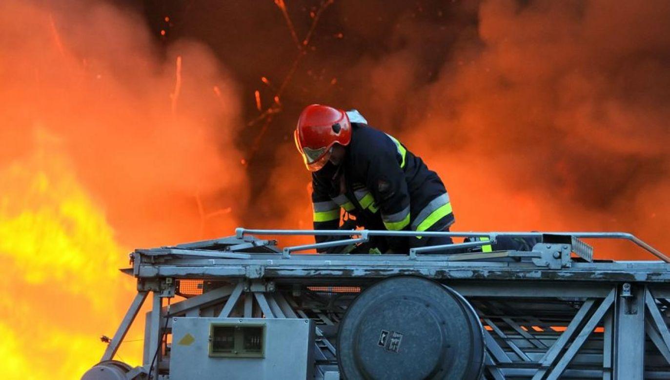 W gaszeniu pożaru uczestniczy osiem wozów strażackich  (fot. Shutterstock/Dariush M)