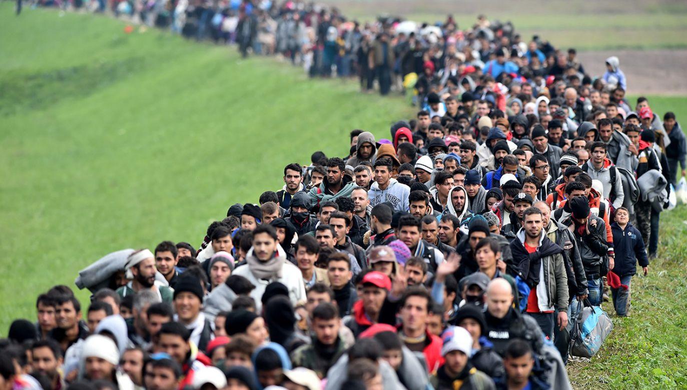 W 2015 roku do Niemiec trafiło ponad milion migrantów (fot.  Jeff J Mitchell/Getty Images)
