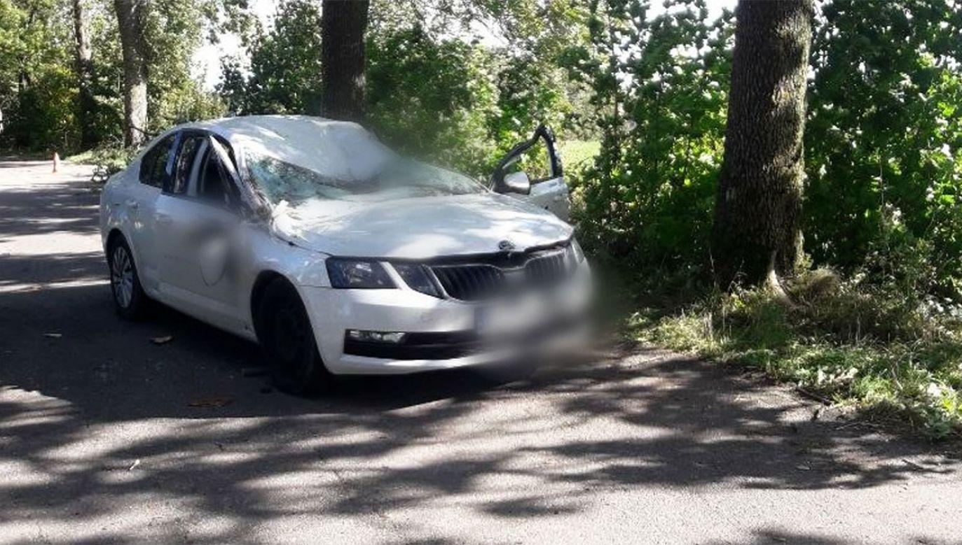 Kierowca skody nie żyje (fot. tt/Policja Olsztyn)
