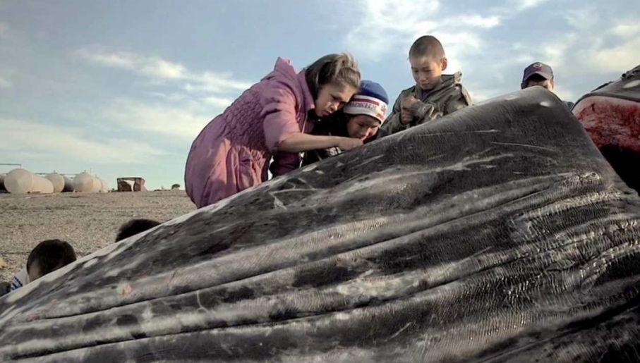 """Najczęściej wyróżnianym tytułem festiwalu został """"Wieloryb z Lorino"""" polskiego reżysera Macieja Cuskego (fot. materiały prasowe)"""