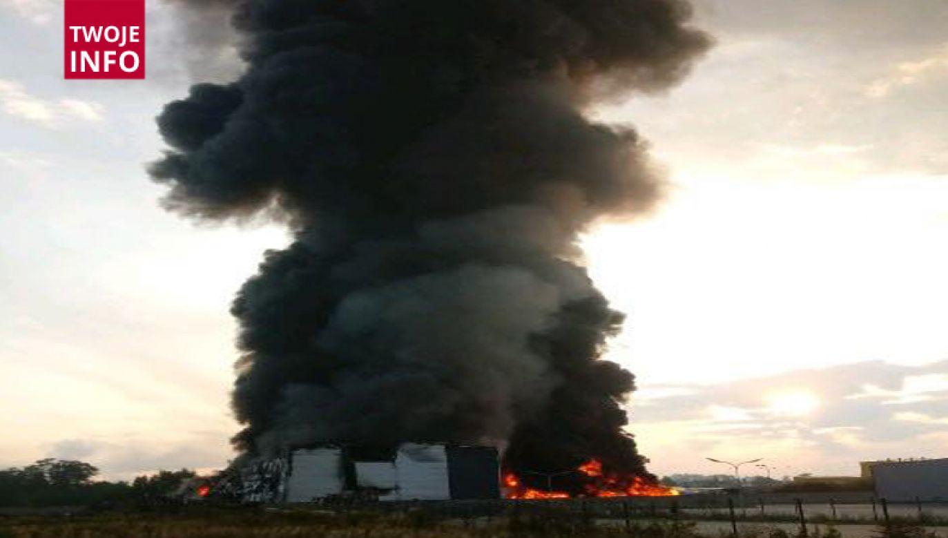 W ogniu stanęła hala recyklingu (fot. Twoje Info)