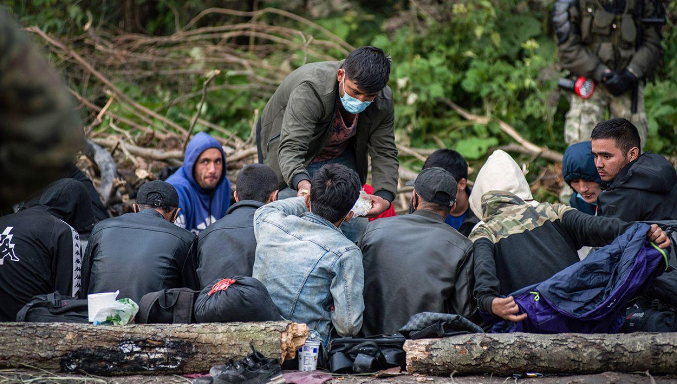 Migrantów na Białorusi jest coraz więcej (fot. Attila Husejnow/SOPA Images/LightRocket via Getty Images)