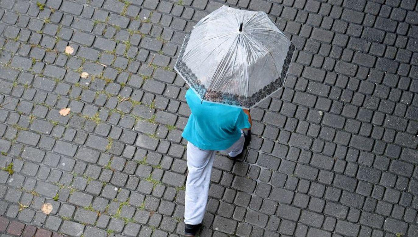 Miejscami mogą wystąpić przelotne opady deszczu (fot. PAP/Darek Delmanowicz)