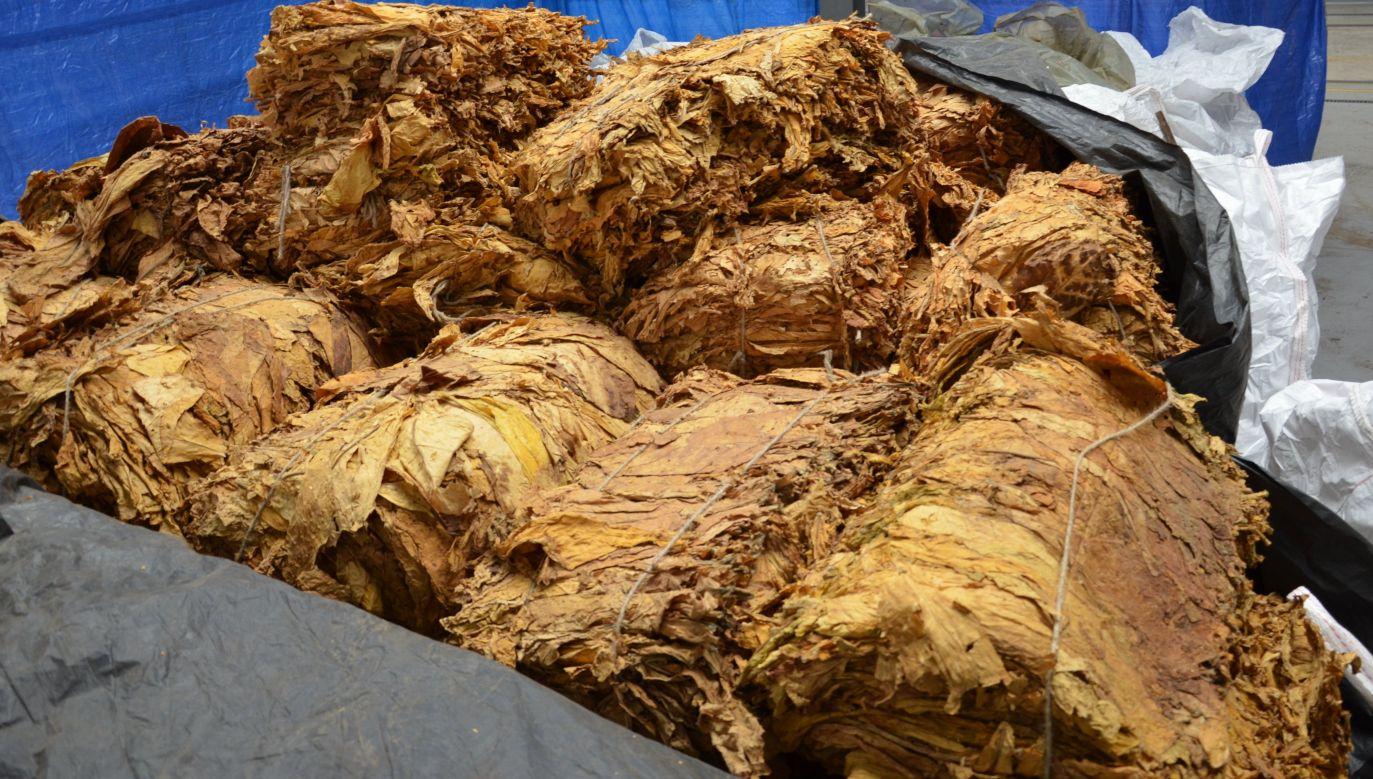 Z takiej ilości można wyprodukować ok. 4 mln sztuk papierosów (fot. KAS)