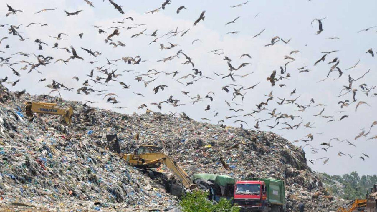 Inowrocławska spółka miejska potwierdza, że nielegalne wwożenie odpadów komunalnych miało miejsce (fot. Waseem Andrabi/Hindustan Times via Getty Images)