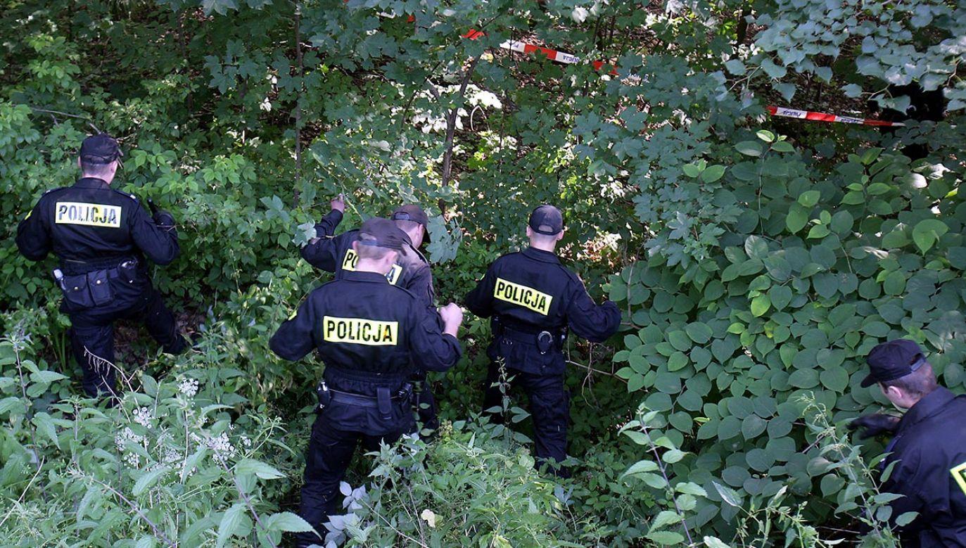 Rozczłonkowane zwłoki ukryto w różnych miejscach (fot. PAP/Helena Spokojna, zdjęcie ilustracyjne)