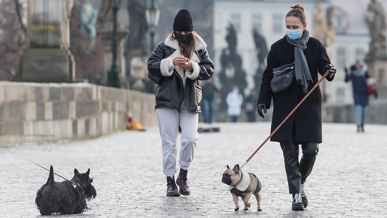 Poza psami, w cenie są ubrania dostawców jedzenia (fot. Tomas Tkacik/SOPA Images/LightRocket via Getty Images)