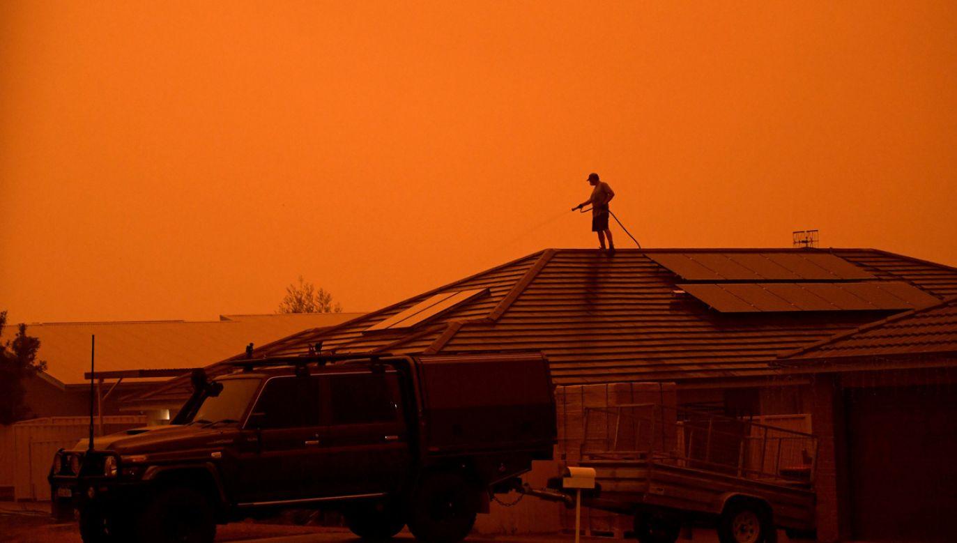 Pożary wciąż pustoszą tymczasem spory obszar południowo-wschodniej Australii (fot.  REUTERS/Tracey Nearmy)