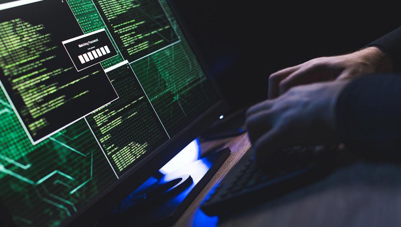 Eksperci Polski i NATO są w kontakcie w sprawie cyberataków (fot. Shutterstock/husjur02)