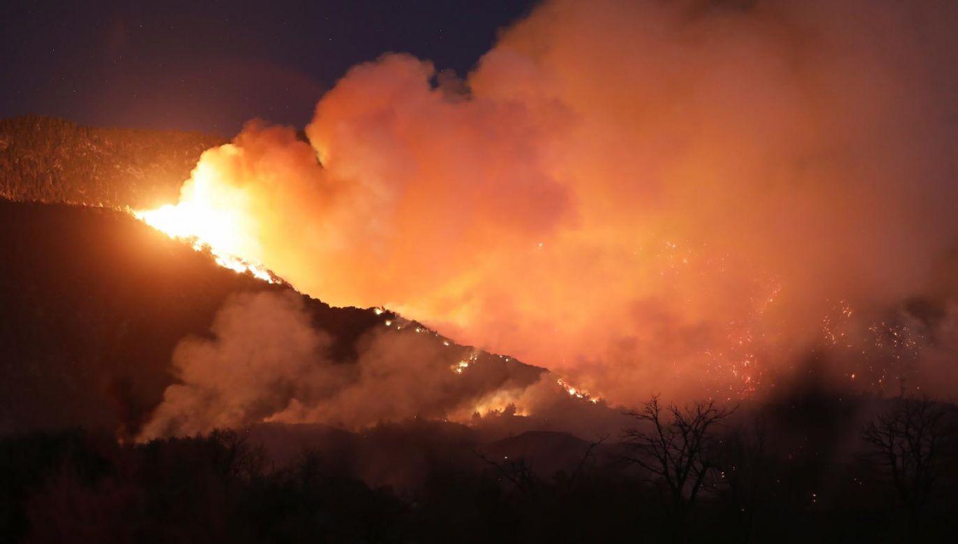 Ogień rozprzestrzenia się w szybkim tempie (fot. PAP/EPA/DAVID SWANSON)